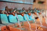 Ways to Reduce Your Hot Water Costs with Solar Water